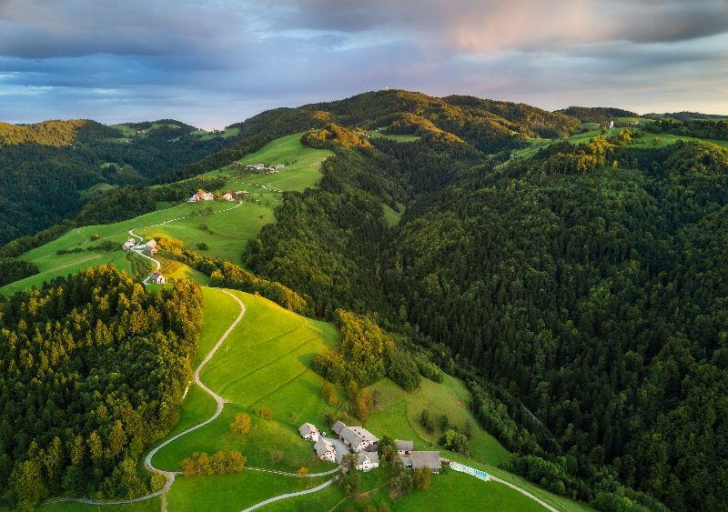 The Slovenian forests.