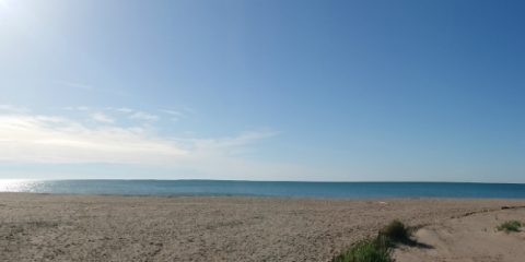 Le Sérignan Plage: the place where I had the real campsite feeling!